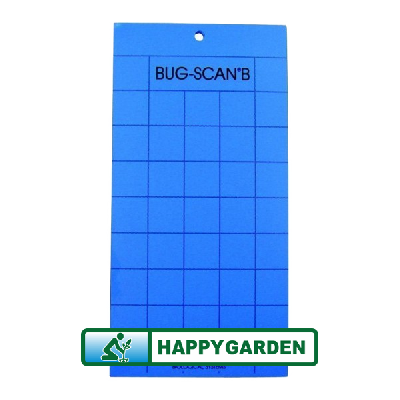 BIOBEST BUG-SCAN (BANDES NAB BLEU) 10 PIECES